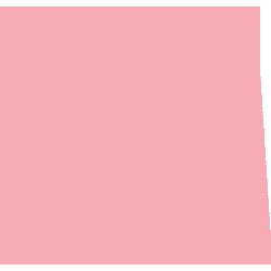 アイコン 寿袋