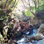 アクティビティ体験 布滝トレッキングツアー